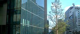 都市部における緑化