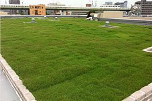屋上緑化のイメージ画像